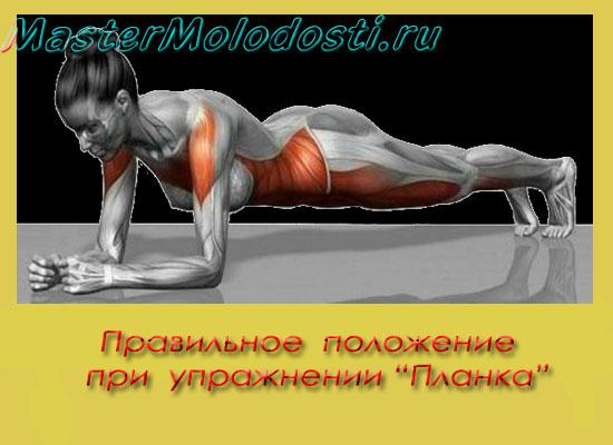 Правильное положение тела при выполнении упражнения Планка