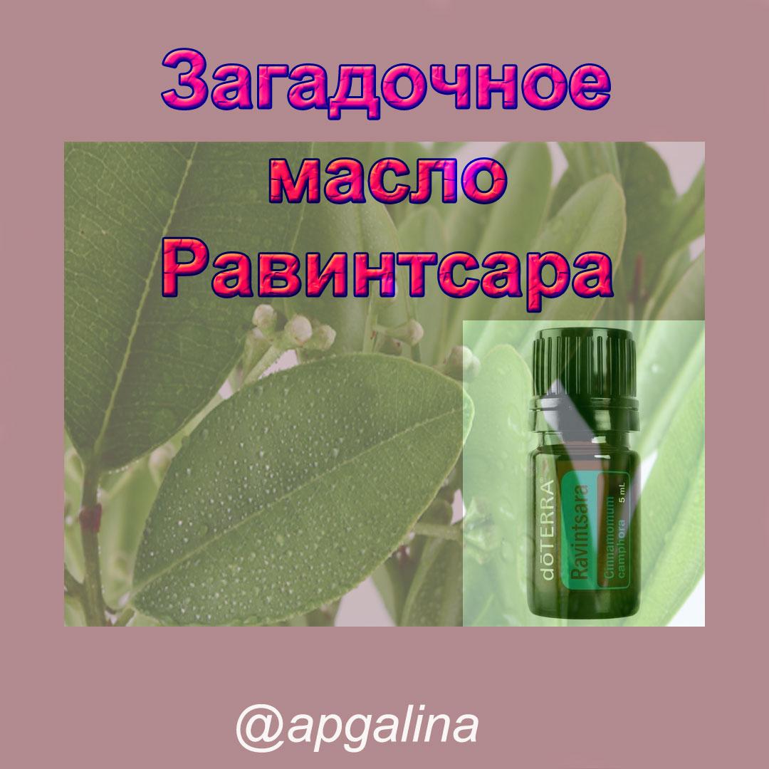 масло равинтсара